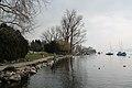 Lake Zurich - panoramio (25).jpg
