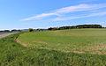 Landscape by Sviňomazy.jpg