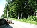Landschaftsschutzgebiet Waldgebiet bei Neuenkirchen Melle, von der Straße aus - Datei 3.jpg