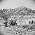 Landschap in de omgeving van Jericho. Op achtergrond de Wadi el Kelt met het St., Bestanddeelnr 255-5608.jpg