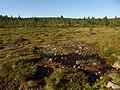 Lapland - Urho Kekkonen National Park - 20180728171423.jpg