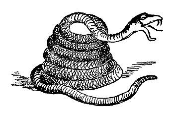 Lear 3 - Rattlesnake.jpg