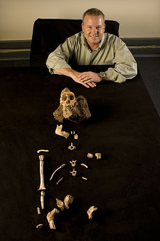 Lee Rogers Berger - Berger displays the fossilized bones of Australopithecus sediba he discovered at the Malapa Fossil Site