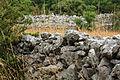 Les murettes en pierres calcaires.JPG