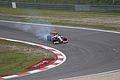Lewis Hamilton 2009 Germany 2.jpg