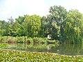 Lichtenrader Dorfteich (Village Pond) - geo.hlipp.de - 38619.jpg