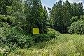 Liebiadziny reserve (Belarus) 15.jpg