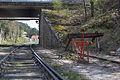 Ligne de Bourron-Marlotte à Malesherbes - 2013-04-21 - IMG 9447.jpg