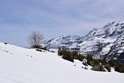 Llanos de Lalarri nevados.jpg