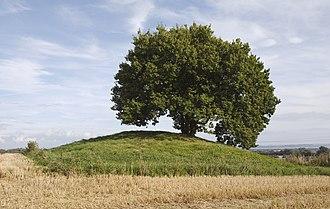 Round barrow - Image: Loddenhøj