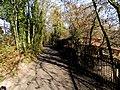 Loex, Promenade le long du Rhone - panoramio (14).jpg