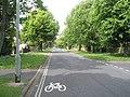 Looking northwards up Staunton Avenue - geograph.org.uk - 1295188.jpg