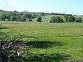 Looking uphill towards Cefn Colstyn - geograph.org.uk - 421997.jpg