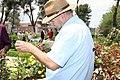 Los rosales franceses, ganadores en el concurso de rosas 'Villa de Madrid' 14.jpg
