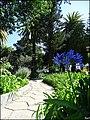 Loule (Portugal) (50390653028).jpg