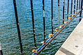 Love Locks by the Water-149019.jpg