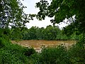 Lower Haw River Trail 3.jpg