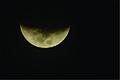 Lua Zoom.jpg