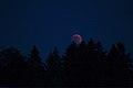 Lunar Eclipse 2018 SG 008 (29823675868).jpg