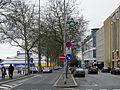 Luxembourg, Glacis allée Scheffer (2).JPG