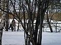 Lyovintsy, Kirovskaya oblast', Russia, 612079 - panoramio (140).jpg
