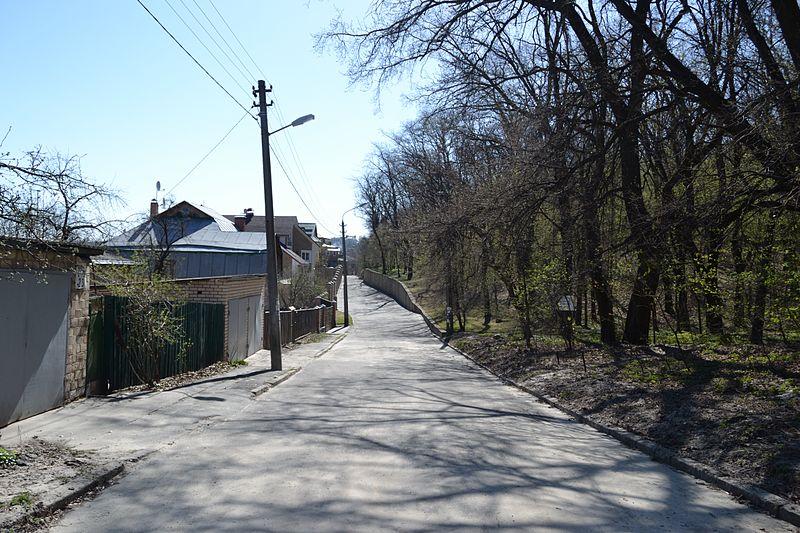 Файл:M. Rylsky street in Kyiv.JPG