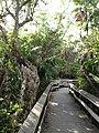 Mahogany Trail - panoramio.jpg