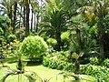 Majorelle Garden (2),Marrakech,Morocco.jpg