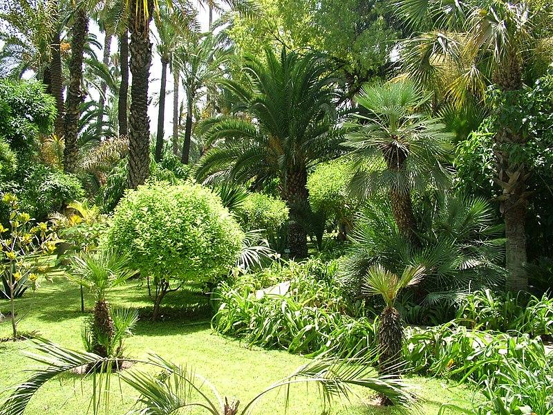 حديقة ماجوريل بمراكش