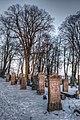 Malbork, Poland - panoramio (4).jpg