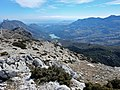 Malla de Llop from Famoca hike (26852002221).jpg