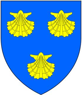 John Malet (died 1570) English politician