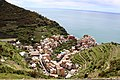 Manarola from above.jpg