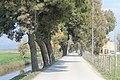Manfredonia , Puglia - panoramio (4).jpg