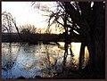 Mara Manor's pond - panoramio.jpg