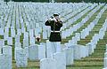 MarinePlaysTaps ANC.jpg