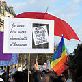 Marriage equality demonstration Paris 2013 01 27 08.jpg