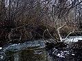 Mezi Rokytkou a Vidlákem - panoramio (9).jpg
