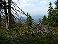 Minčol - panoramio.jpg