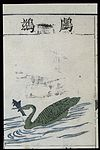Ming herbal (painting); Cormorant Wellcome L0039449.jpg