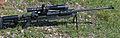 Mini Hecate-338 Lapua Magnum-01.jpg