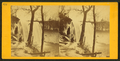 Minnehaha Falls in the winter, from Robert N. Dennis collection of stereoscopic views.png