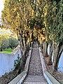 Miradouro de São Gens - Castelo Branco - Portugal (49842318437).jpg
