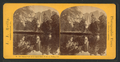 Mirror View of the Yo Semite Falls, Yo Semite Valley, Cal, by Reilly, John James, 1839-1894.png