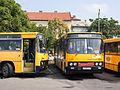 Miskolc, autobusové nádraží, autobusy.jpg