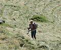 Mitterkaser - Bauern beim Heuen 3.jpg