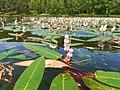 Moczydlo Lake (1).jpg