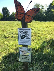 Butterfly Way Station Sign