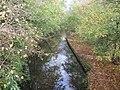 Montgomery Canal at Belan - geograph.org.uk - 1565121.jpg