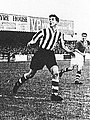 Monty Wright for Chester vs Wrexham in 1954.jpg